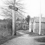 old_village_portSimpson